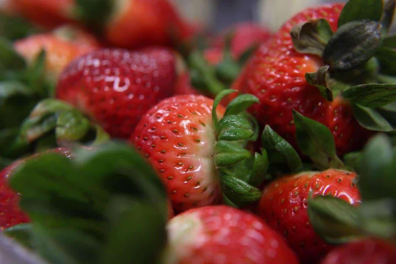 Healthcare Food Service, Fresh Ingredients